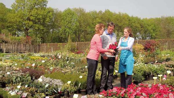 Female worker showing mature couple plant in garden centre Royalty-free stock video