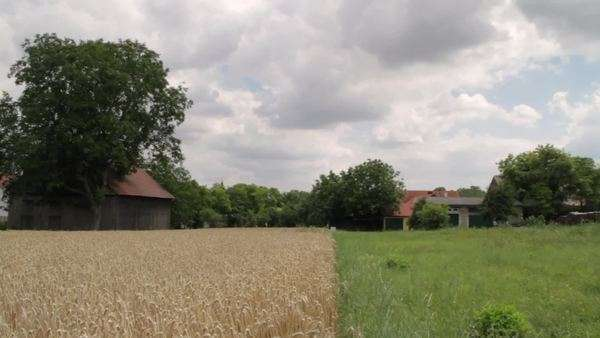 Wide-angle shot of a farm in the countryside Royalty-free stock video