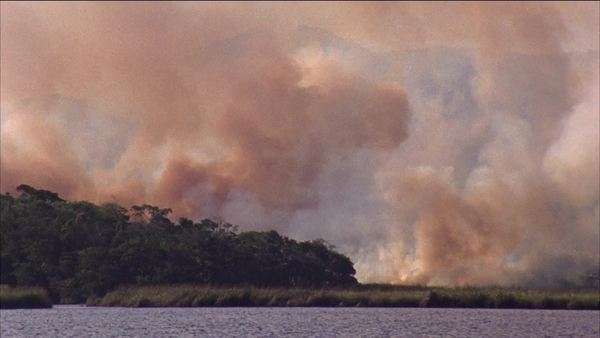 Hand-held shot of burning rainforest in Brazil Rights-managed stock video