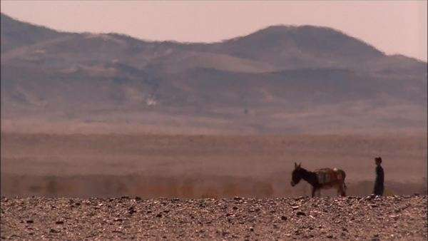 Static shot of a boy walking a donkey in Sahara Desert, Africa Rights-managed stock video