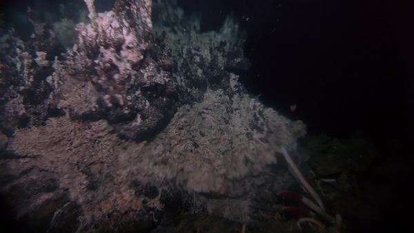 Hand-held shot of a hydrothermal vent. Originally sourced from 70mm film Rights-managed stock video