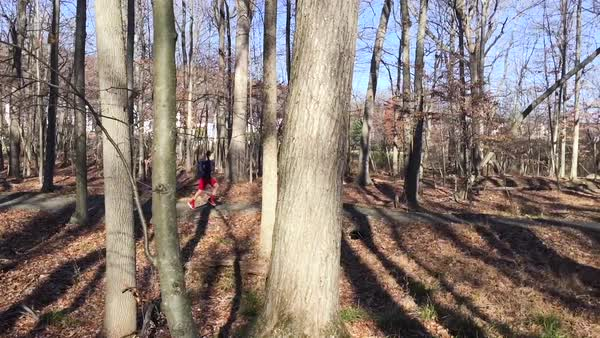Slow motion shot of a teenage boy running in a forest Royalty-free stock video