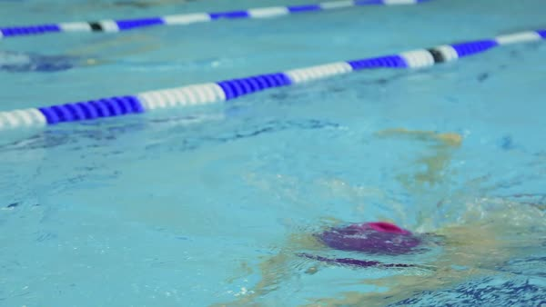 Tracking shot of young female athlete training fast breaststroke in pool Royalty-free stock video
