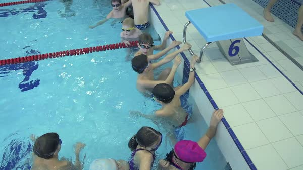 Group of school children in indoor swimming pool before training Royalty-free stock video