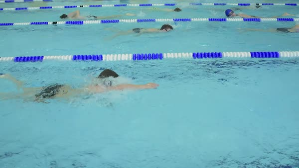 Dolly shot of school children practicing crawl stroke in indoor swimming pool Royalty-free stock video
