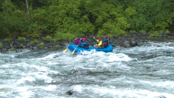 Wide shot of four people rafting on a river Royalty-free stock video