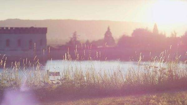 Shot of lake and grass at sunset with lens flare Royalty-free stock video