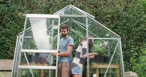 Young hipster couple plants and waters seedlings in homemade greenhouse garden in slow motion outdoors in front of new modern home Royalty-free stock video