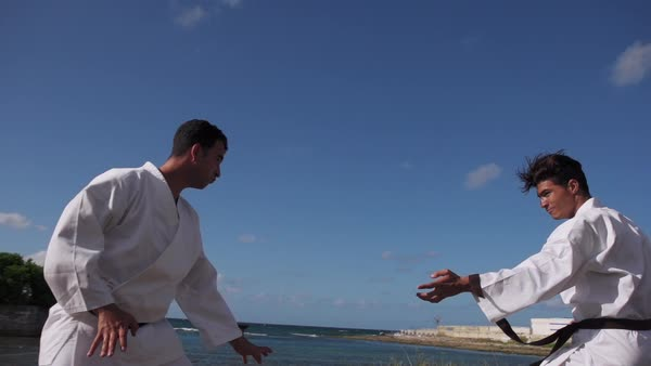 men exercising in karate and traditional martial arts simulation of