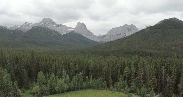 Aerial shot of a dense forest in a valley in Lac des Arcs, Alberta Royalty-free stock video