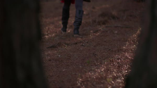 Close Up Of Woman S Footsteps Wearing Boots While On An Adventure In The Woods In Autumn Stock Footage