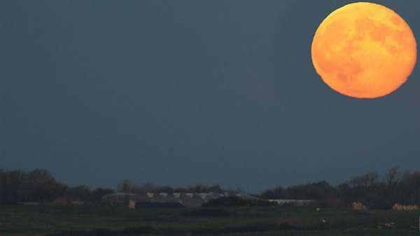 Timelapse of the full moon rising in the night sky Rights-managed stock video