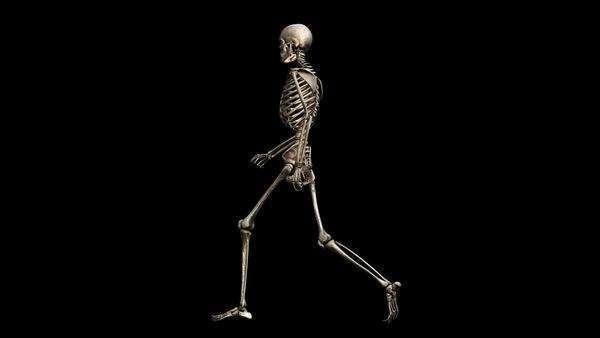 animation of a walking chrome human skeleton on a black background, Skeleton