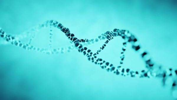 Animation of a rotating double helix DNA molecule strand. Royalty-free stock video