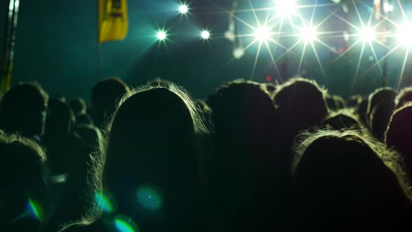 Back view of people standing in a crowd at a concert Royalty-free stock video