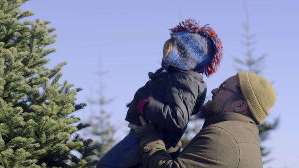 Father lifts his little boy up, so he can try to touch the top of Christmas tree Royalty-free stock video