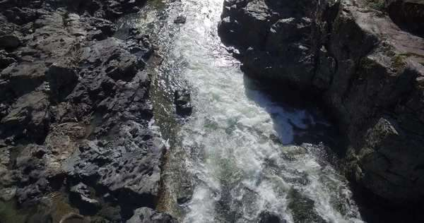 Wide shot of a river in Vancouver island Royalty-free stock video