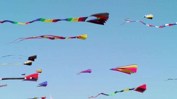 Kites flying against blue sky, Long Beach, Washington, USA Royalty-free stock video