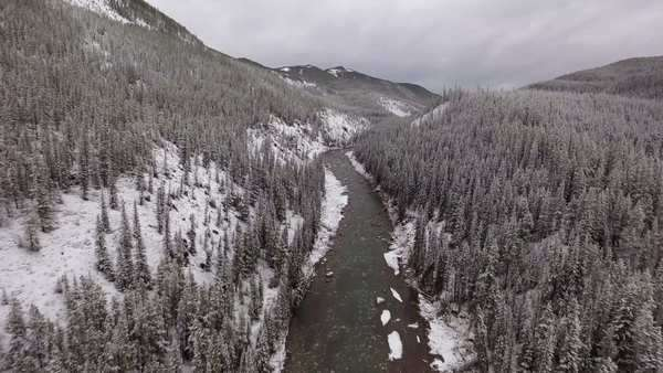 Wide shot of river flowing in a winter forest Royalty-free stock video