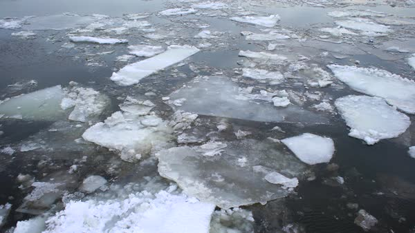 Medium shot of ice floes at daytime Royalty-free stock video