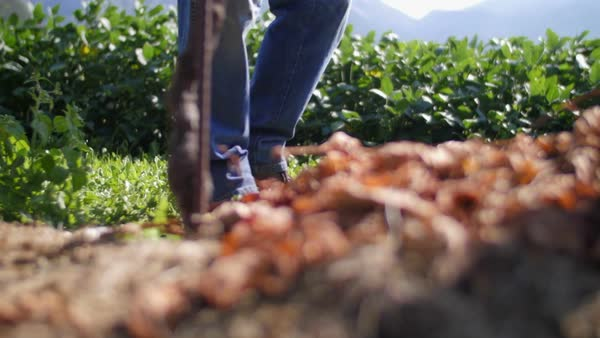 Slow motion of farmer's legs walking in the nature Royalty-free stock video