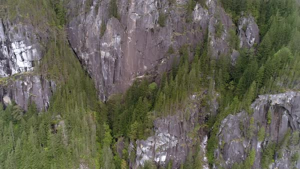 Aerial of Granite Rock Face on Large Mountain Cliffs in North American Forest Royalty-free stock video