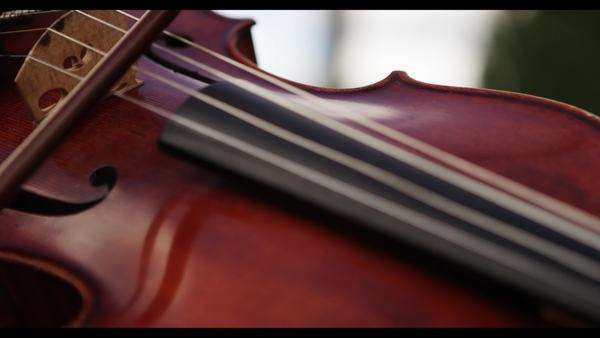 Slow motion close up shot of a woman playing the violin with a bow Royalty-free stock video
