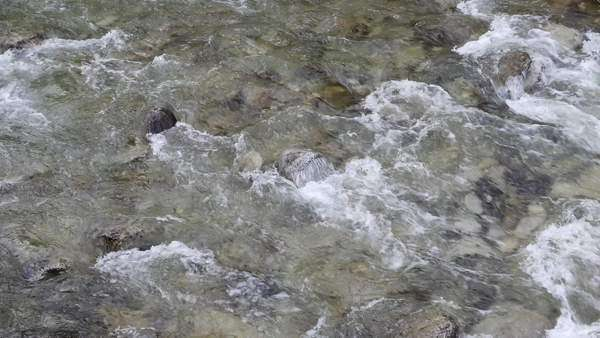 Water rushes over a stony river bottom. Royalty-free stock video