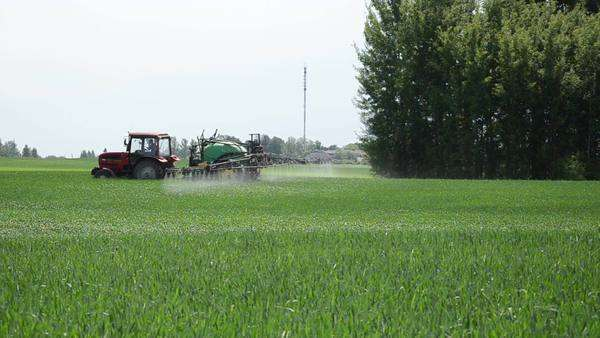 Tractor sprinkler spraying small streams fertilizers on crop growth  promoting ripening stock footage