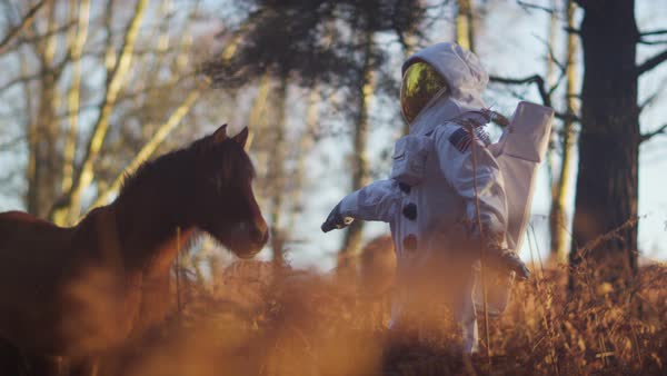 Astronaut walking in woodland area looking for signs of life meets a wild pony. Royalty-free stock video
