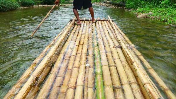 Trip of Bamboo rafting in the tropical forest in Phang nga, Thailand Royalty-free stock video