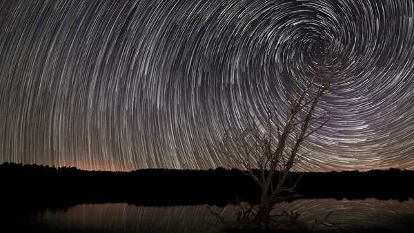 Spiral star trails with reflection on lake. lonely old tree. stunning cosmos Polaris North Star at center as earth rotates on axis. beautiful star trails stunning cosmos. beautiful night sky Royalty-free stock video