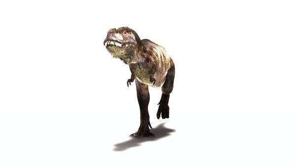Tyrannosaurus rex dinosaur animation. RGB and image mask available upon request. Royalty-free stock video