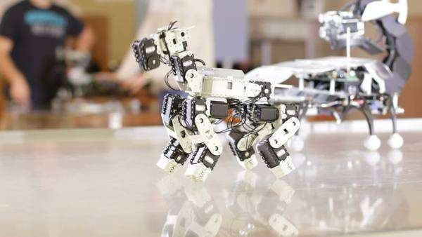 Robotic dog performing tricks as part of a class presentation Royalty-free stock video