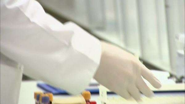 . Hospital pathologist with samples in the laboratory Royalty-free stock video