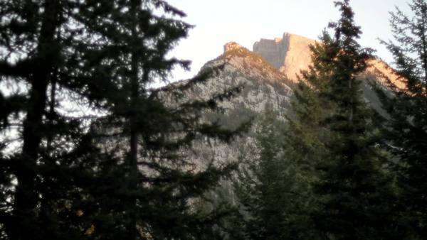 A view of the mountain  from between trees Royalty-free stock video