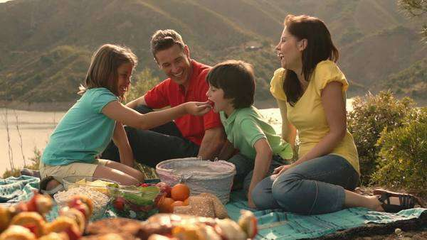 Dolly shot of family having barbecue picnic by lake in countryside. Royalty-free stock video
