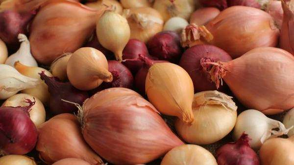 Fly over background of onions and shallots Royalty-free stock video
