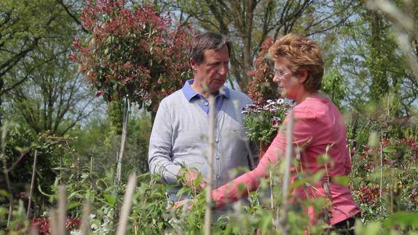 Mature couple looking at plants in garden centre Royalty-free stock video