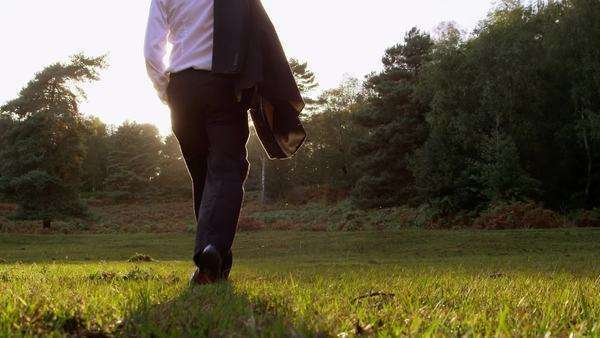 Businessman walks into nature Royalty-free stock video