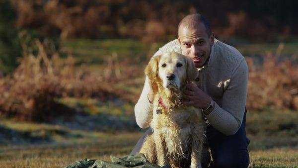 An attractive mixed race man and his friendly dog are spending some time together out in the forest in the autumn sunshine. In slow motion. Royalty-free stock video