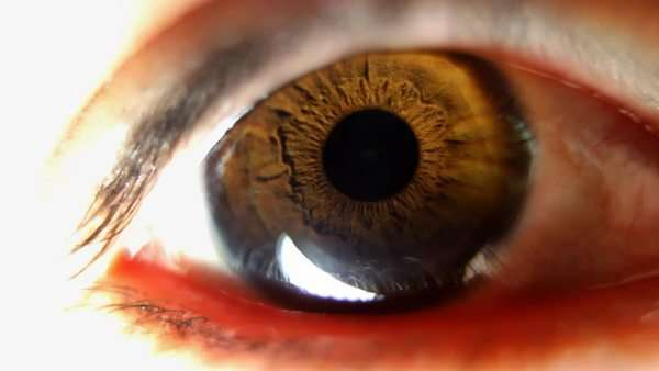 close-up of eye looking around Royalty-free stock video