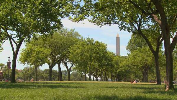 People walk on the parks and gardens in the mall in front of the Washington Monument in DC. Royalty-free stock video