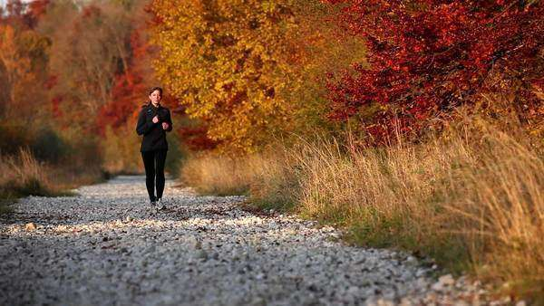 Young woman jogging through autumn countryside Royalty-free stock video
