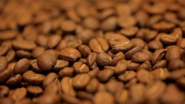 Full frame, selective focus shot of coffee beans Royalty-free stock video
