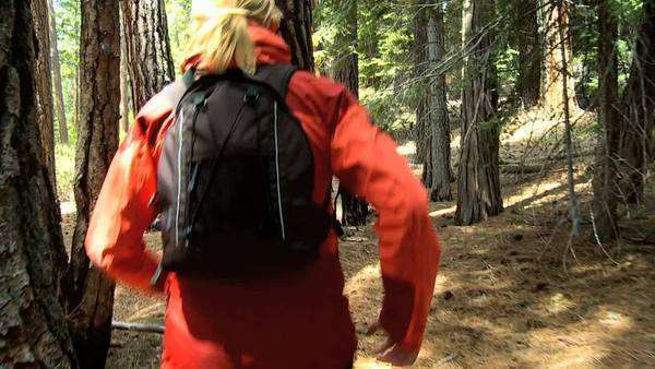 Lone female jogging on trails through the woodland of a national park Royalty-free stock video