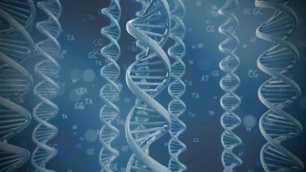 Seamless looping animation of rotating DNA strands with symbols of nucleic acids Royalty-free stock video