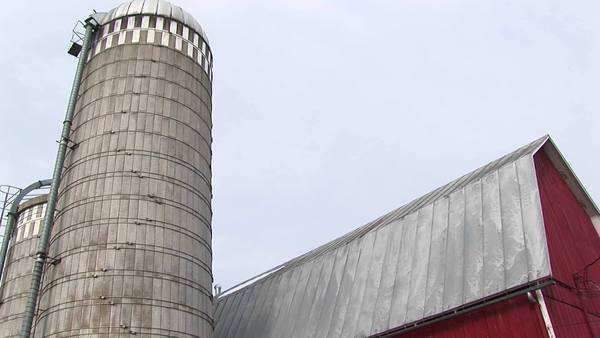 A silo towers over a red barn. Royalty-free stock video