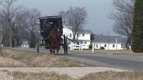 An Amish carriage shares the country roads with automobiles. Royalty-free stock video