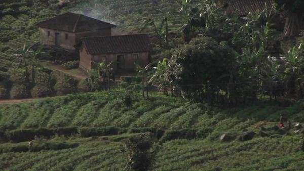 Farm buildings sit in the fields of rural Rwanda. Royalty-free stock video